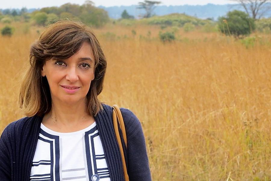 Maria Celina de Sousa Rebelo Lopes Pires
